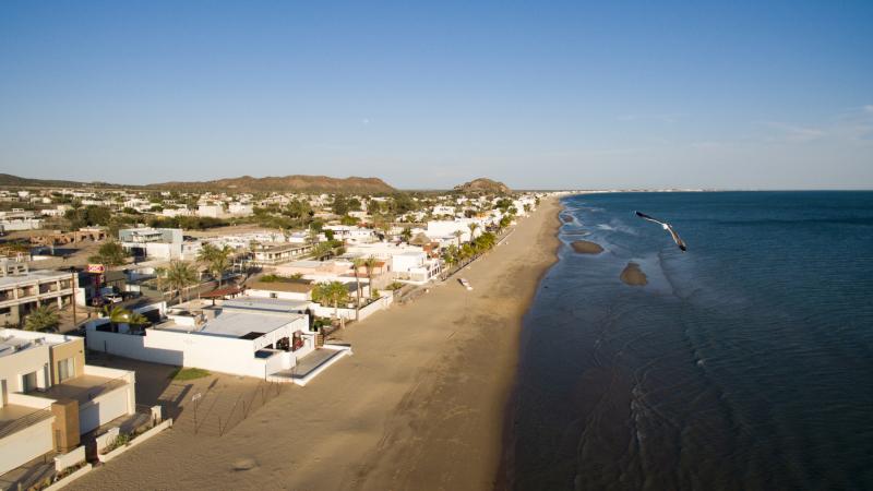 Kino Bay Coast & Seagull