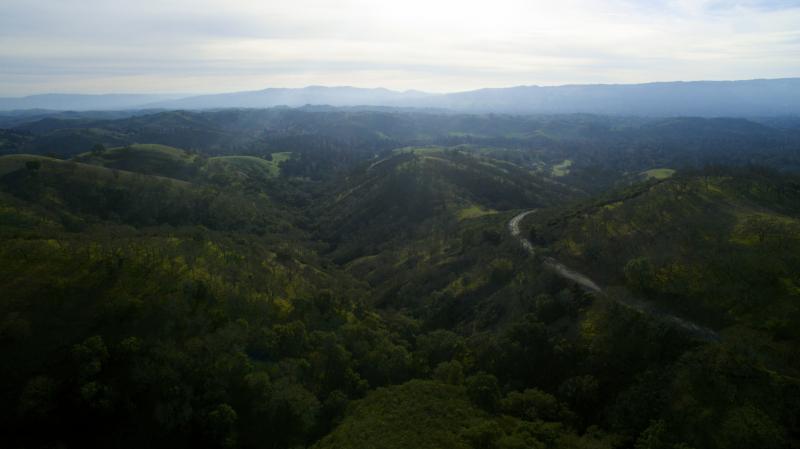 Mt. Diablo Valley, SF, CA