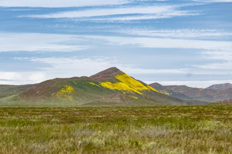 Mountain-Plain